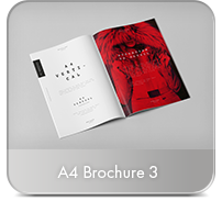 Photorealistic Brochure 3xDL - 19
