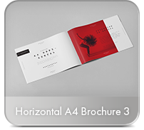 Photorealistic Brochure 3xDL - 20