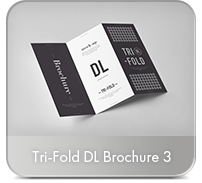 Photorealistic Brochure 3xDL - 70